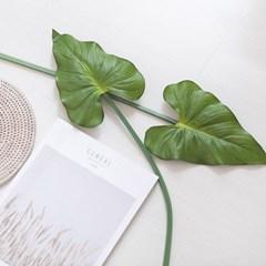 셀렘잎가지 중 66cm 조화 녹색 장식 인테리어 FAIBFT_(1848138)