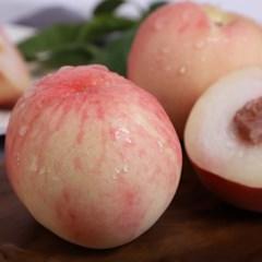 달콤아삭한 털복숭아 4.5kg (20과내외)