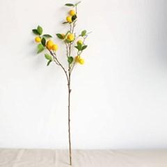 레몬나무 조화 소품_(1610211)
