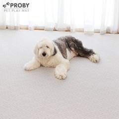 펫플레이 PVC 강아지 애견매트 2개 방수 (2종/택1)