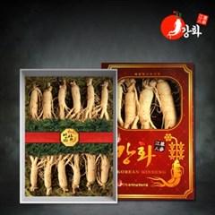 [강화초지인삼] 명품 수삼 1채 750g (10-15뿌리)