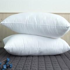 몽쉐어 일반 베개솜 2장세트 50x70