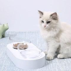 굿초이스 척추 보호 고양이 밥그릇_(243630)
