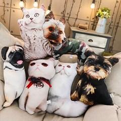 고양이 강아지쿠션 동물사진 쇼파등받이쿠션_(245472)