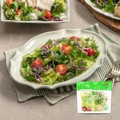 [꼬꼬빌] 국내산 채소만 담은 샐러데이 샐러드 85g x 10팩