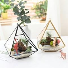 공기정화식물 틸란드시아 테라리움 DIY 세트 - 포레스트 프렌드