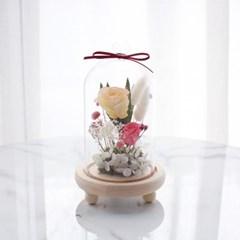 프리저브드플라워 유리돔 ROSE_LIGHT ORANGE
