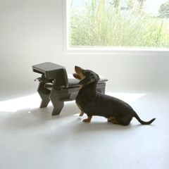 Hound step stool