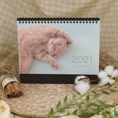 2021 고양이 탁상 달력