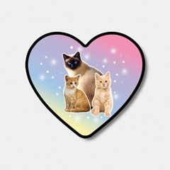 cat love 하트톡♥