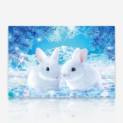 겨울 흰토끼 DIY 보석십자수 십자수 비즈세트_(2462515)