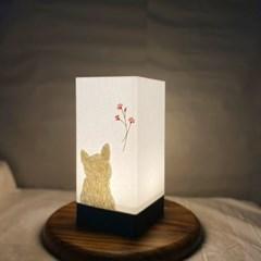 봄향기 고양이무드등 집들이선물 생일선물 특별한 무드등