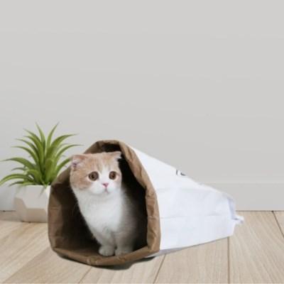 고양이 바스락하우스 터널 이안에나있다 장난감 바스락백