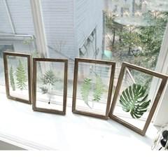 식물 액자 4style