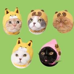 카와이이 고양이모자 너구리와여우 캡슐토이 가챠