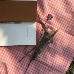 빈티지 핑크 피크닉 매트(Vintage pink picnic mat)