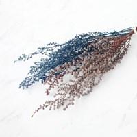 가을/겨울시즌 한정 Stoebe_스토브 (컬러2종)