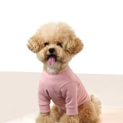 돌로 Baby Pink Sweatshirts