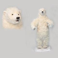 6506-북극곰 140cm.H_(1716228)