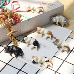 잠자는 고양이 자석 마그넷 7종세트