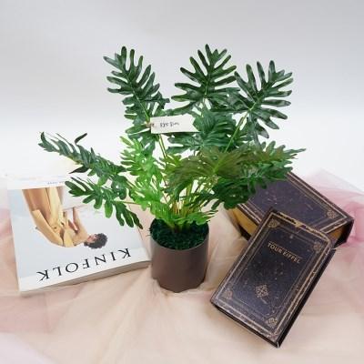 셀렘화분 조화나무
