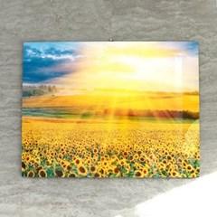 해바라기 꽃 햇살 인테리어 그림 액자