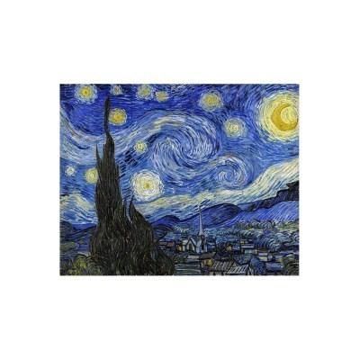 [빈센트반고흐]명화 캔버스액자_별이 빛나는 밤(65x52)