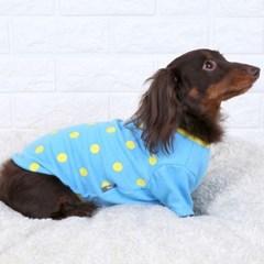 강아지옷 배색도트 반팔 티셔츠 블루 애견의류 실내