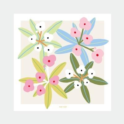 muse flower