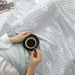 정전기 방지, 항균가공 비숑 엠보 극세사 두겹 대형 담요 4size