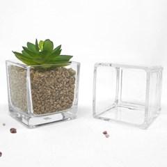 인테리어 화분 다육이 꽃 식물 분갈이 대형 유리 다육화분