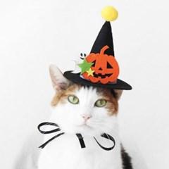 할로윈 모자 고양이 강아지 옷 머리띠 코스튬 Miyopet