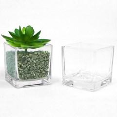 인테리어 실내 거실 식물화분 다육이 조화 중형사각 유리 화분