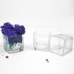 인테리어 유리 미니화분 조화 꽃 스칸디아모스 다육 화분