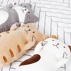 고양이 낮잠 숙면 베개