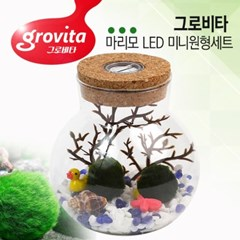 그로비타 마리모 LED 미니원형세트_(1207378)