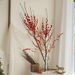 크리스마스 데코용 생화가지 낙산홍 레드 산수유 가지