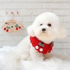 강아지케이프 애견니트스카프 고양이케이프 핸드메이드_(1277709)
