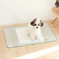 디딤 강아지 배변보조패드 배변판 매트