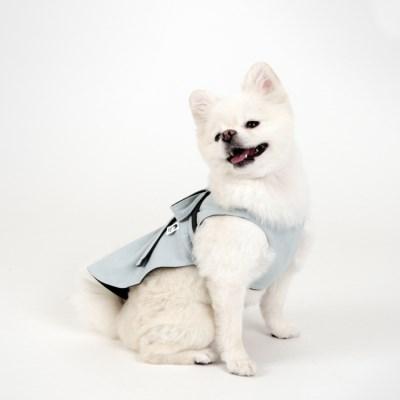 [퍼리굿] 강아지옷 양면 코튼 원피스 (민트 & 딥그레이)