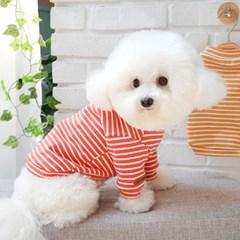 강아지기본티셔츠 베이직터틀넥 가을줄무늬 티셔츠_(1282669)