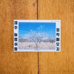 [손끝에서] 제주 놀멍쉬멍 점착메모지_벚꽃나무
