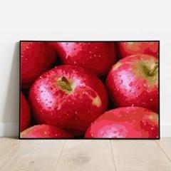 명화그리기 풍요로운 사과 피포페인팅 유화그림 DIY