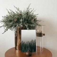 쭈키즈_크리스마스 식물 그림 엽서+스티커