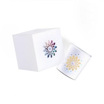 천연 향초 컬러 크리미 조명 보틀 캔들 7oz 160g