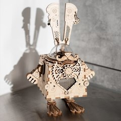AM481 Bunny 버니 D.I.Y 뮤직 박스 (오르골)