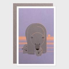 카드 / 112 북극곰