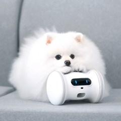 바램펫 피트니스  Pro 로봇 강아지팩 (바램트릿 포함)