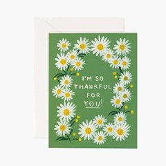 Daisies Thankful for You Card 감사 카드