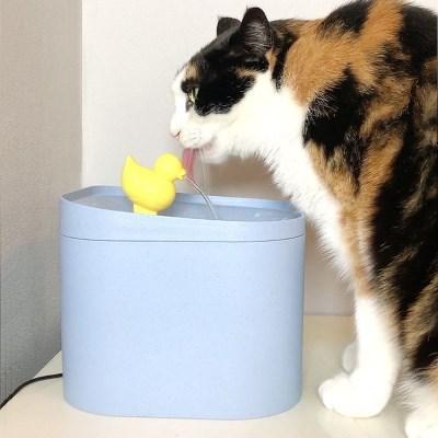 묘심 러버덕 고양이정수기